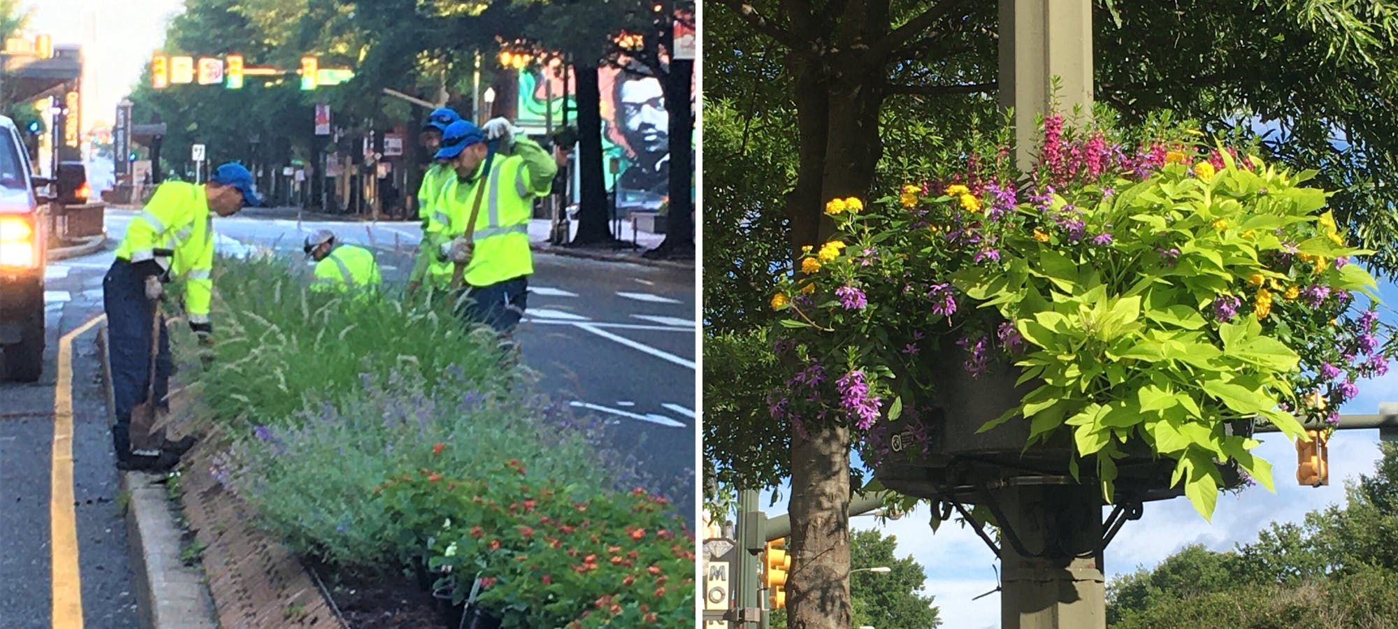 How Venture Richmond Keeps Growing Downtown's Beautification Efforts