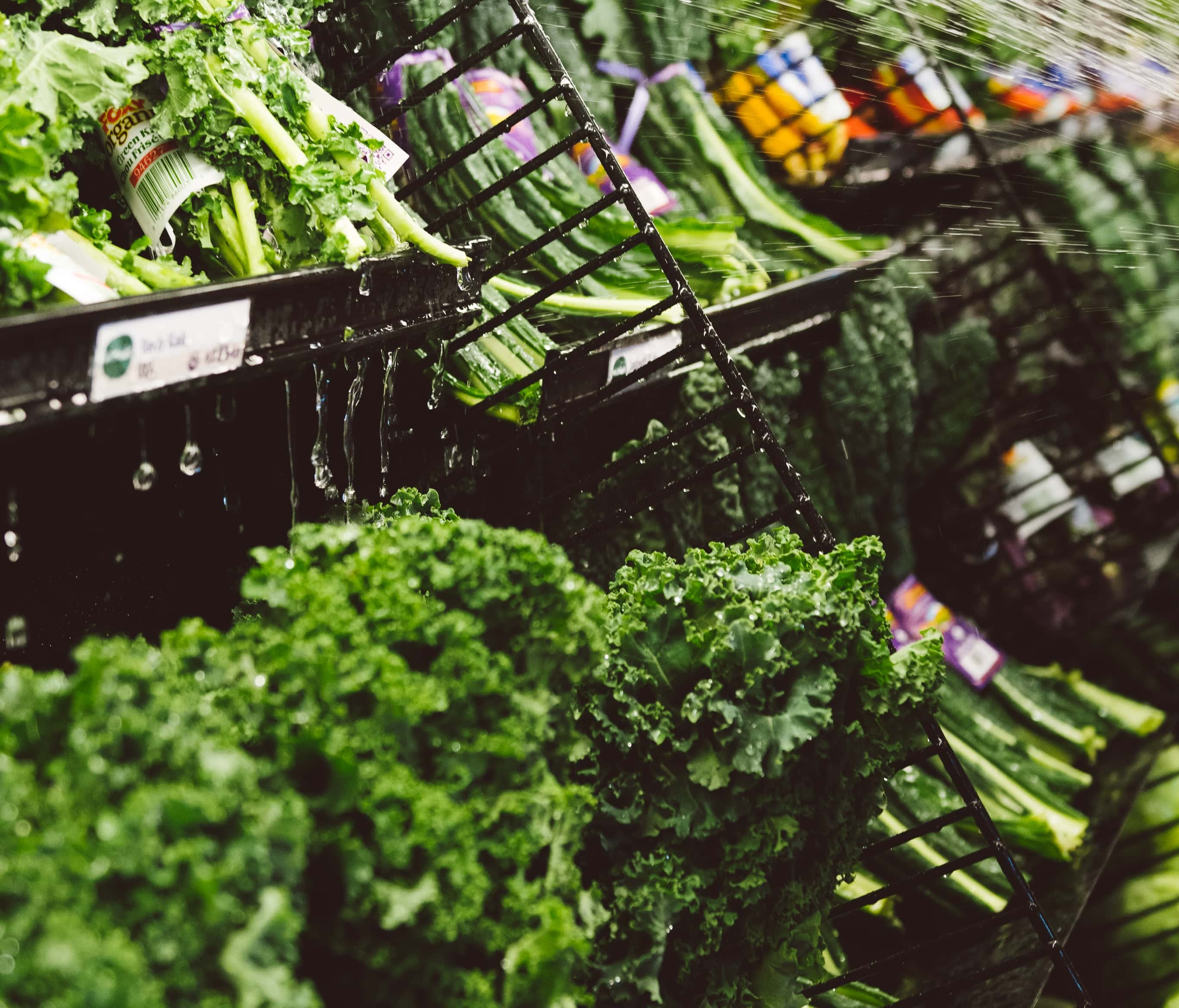 E  coli outbreak has Richmond locals thinking about lettuce