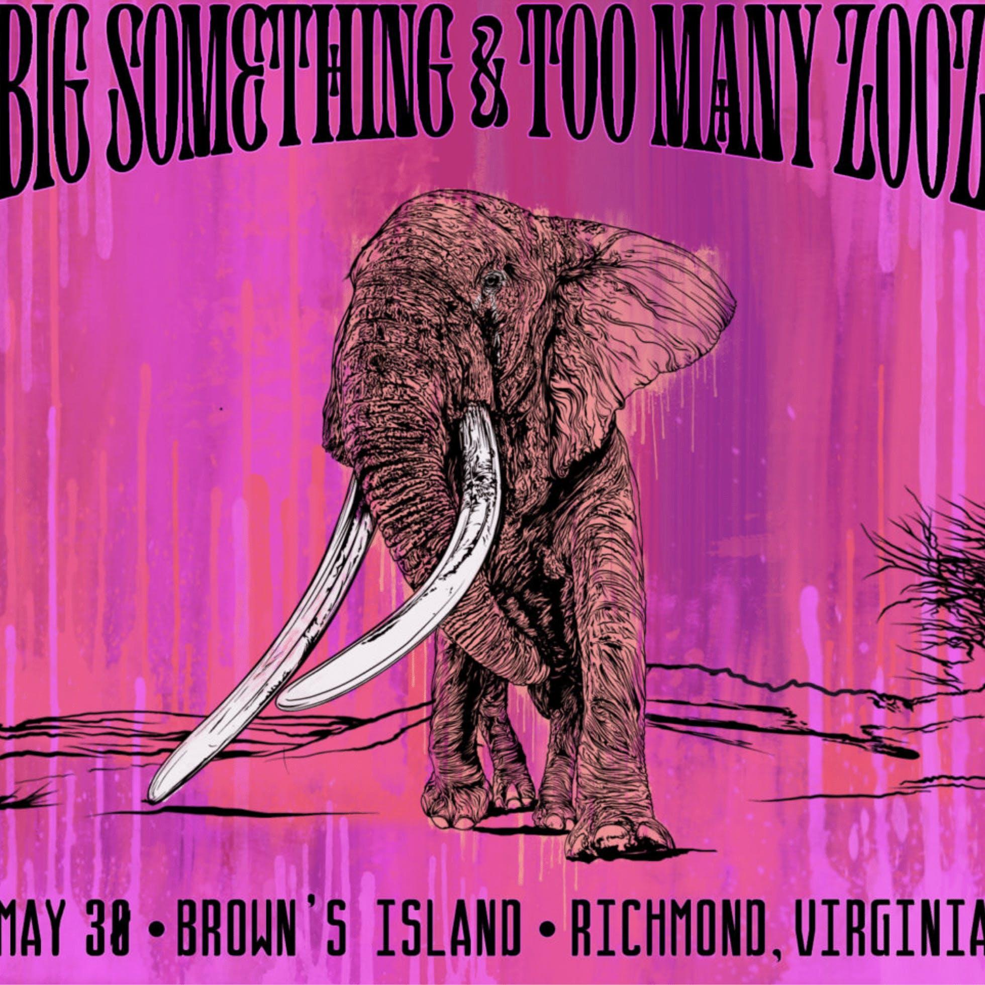 Big Something & Too Many Zooz at Brown's Island
